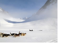 Horsens' Fjord - Iain Roy